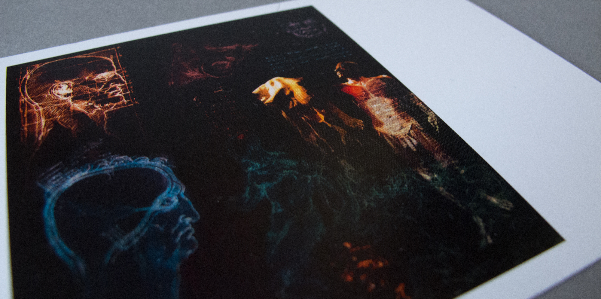 Postcards The Dark Side Of Design Gunther Von Hagens